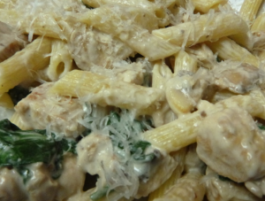 penne with chicken and mushrooms in parmesan cream sauce